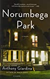 img - for Norumbega Park: A Novel book / textbook / text book
