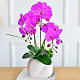 GBHNJ False Purple Butterfly Orchid Decoration Vase Artificial Ff