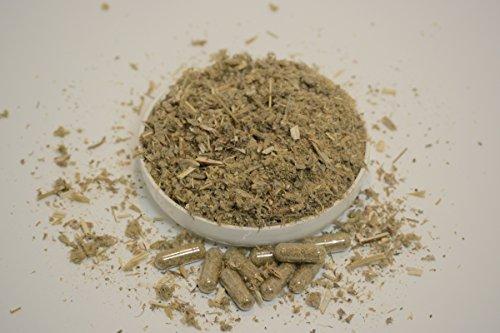 Horehound Herbal Tea