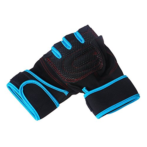 Breathable Microfiber Non-Slip Exercise Gloves Weight Lifting Training Fitness Gym Workout Crossfit Half-finger Gloves with Wrist Wraps Support (Blue, L)