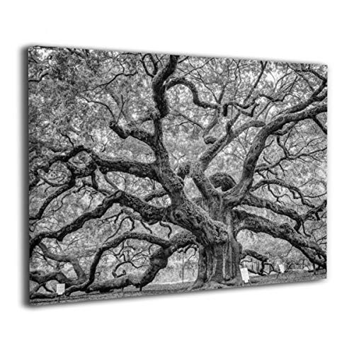 SRuhqu Canvas Wall Art Prints Angel Oak Tree Nature Black and White -Photo Paintings Modern Home Decoration Giclee Artwork-Wood Frame Ready to Hang