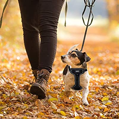 Petacc Dog Harness No-Pull Pet Harness Adjustable Outdoor Pet Reflective Vest Dog Walking Harness with Postpositive D-Ring Buckle for Dogs