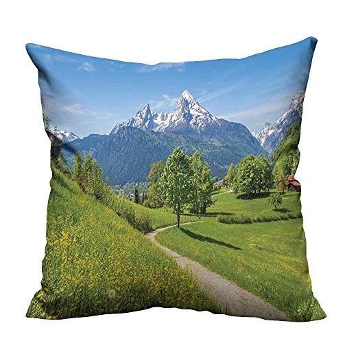 (YouXianHome Modern Fashion Cushion Cover Wildflowers in The Alps and Snow Capped Mountains National Park Bavaria Germany Yellow Resists Dust Mites(Double-Sided Printing) 27.5x27.5)