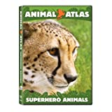 Animal Atlas  Superhero Animals
