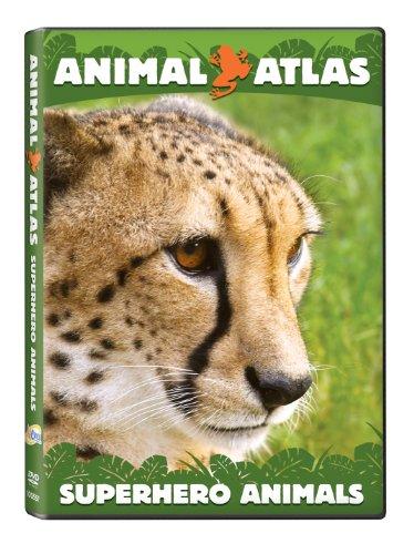 Animal Atlas: Super Hero - Superhero Animal