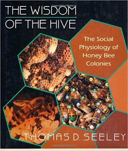 Image result for the wisdom of the hive image