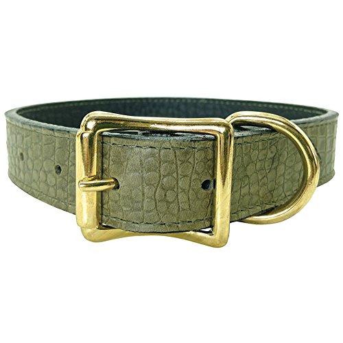 """Auburn Leather - Savannah Embossed Pet Collar - 20""""-24"""" - Olive"""