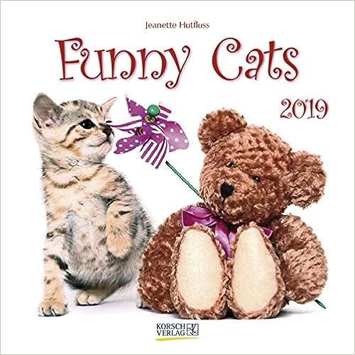 Funny Cats 2019 Broschürenkalender