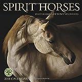 Spirit Horses 2018 Wall Calendar