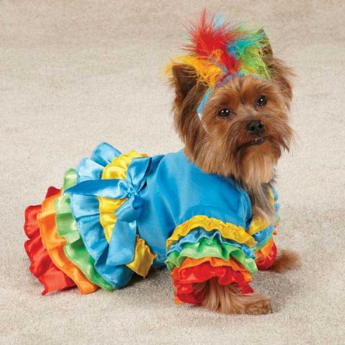 Polly Parrot Dog Costume (Lg)