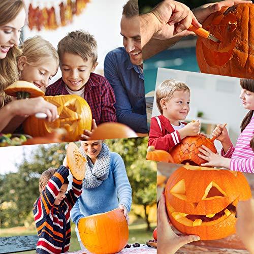 LOVEINUSA 14 Piece Professional Pumpkin Carving Tool Kit Carve Sculpt Halloween Jack-O-Lanterns