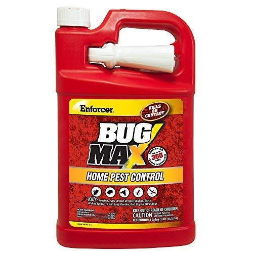 bug max