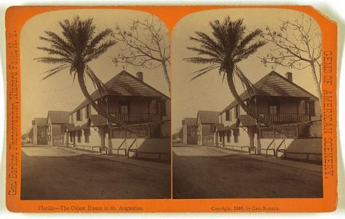 Photo: Photo of Stereograph,Oldest House in St. Augustine,Florida,FL,c1886,Palm - Shopping Map Augustine St