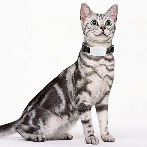 TKSTAR GPS Tracker, Mini Dogs Cats GPS Tracker Realtime