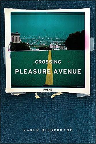 Crossing Pleasure Avenue: Karen Hildebrand: 9781945023132: Amazon ...