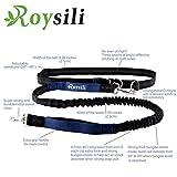 Roysili Hands Free Dog Leash, Premium Dual Handle Running Dog Leash, Lightweight Reflective Bungee Dog Leash for Medium and Large Dogs (Mediume & Large Dog(30lbs-100lbs), Red)