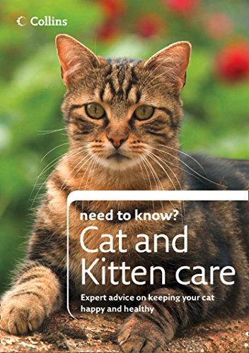 Cat and Kitten Care (Collins Need to Know?) (English Edition)