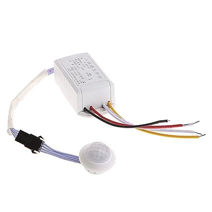 Besttse - Sensor de cuerpo por infrarrojos de 12 V para interruptor de sensor de movimiento