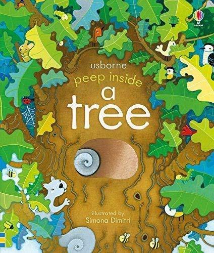 Peep Inside a Tree: 1