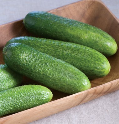 David's Garden Seeds Cucumber Pickling Harmonie (Green) 25 Hybrid Seeds