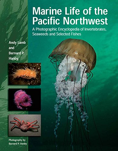Marine Life of the Pacific Northwest: A Photographic Encyclopedia of Invertebrates, Seaweeds And Selected Fishes [Andy Lamb - Bernard Hanby] (Tapa Dura)