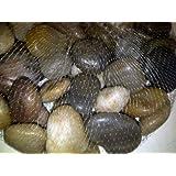 River Rocks, Pebbles, Outdoor Decorative Stones, Natural Polished Gravel, For Aquariums, Landscaping, Vase Fillers, Succulent, Tillandsia, Cactus pot, Terrarium, Bamboo Plants, 2.2 LB.(32-Oz).
