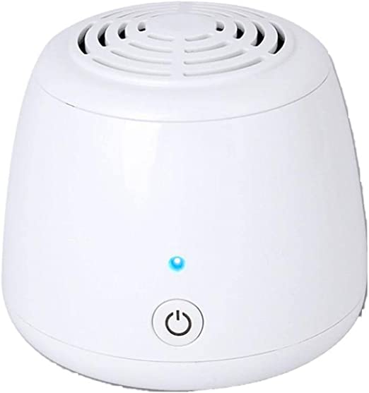 TINE Pequeño purificador de Aire para el hogar, máquina de ozono, desodorización, eliminación de olores, desinfección de Mascotas, formaldehído Mini: Amazon.es: Hogar