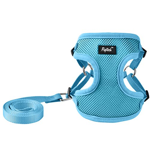 PUPTECK Harness for Small Dogs - Leash Set Adjustable Soft Mesh Pet Vest for Walking Blue
