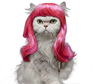 Amazon.com : Drasawee Long Synthetic Female Pet Wigs Dog