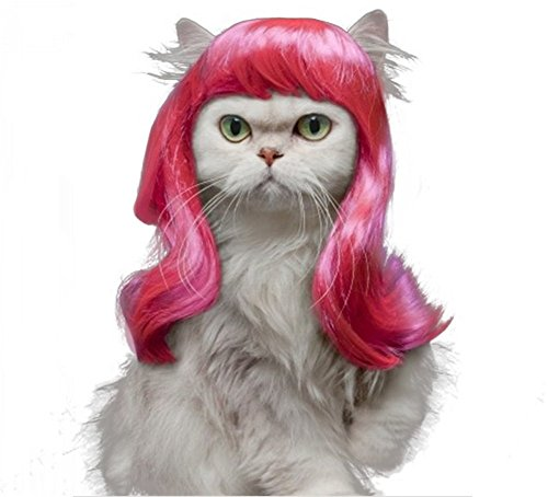 Drasawee Long Synthetic Female Pet Wigs Dog Cat Hair (Female Cat Costumes)