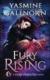 Fury Rising (Fury Unbound) (Volume 1)