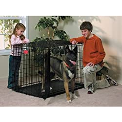 """Life Stages Fold & Carry Double-Door Dog Crate Size: X-Large - 48"""" L x 30"""" W x 33"""" H"""