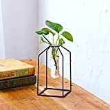 Stylish Transparent Glass Tube Vase with Iron Stand for Water Planting Flower Arrangement Decoration (Large;quadrilateral)