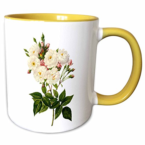 3dRose Dooni Designs Redoute Fruits and Flowers - Redoute Vintage Watercolor Floral Blush Noisette Roses Rosa Noisettiana - 11oz Two-Tone Yellow Mug (11 Noisette)