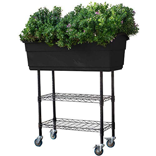 Watex WX161 Mobile Elevated Garden Bed (Black),Self-Watering, Extra Large Planter