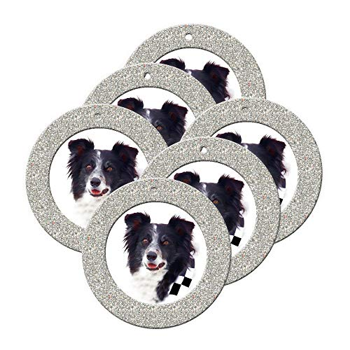 (Mini Magnetic Glitter Christmas Photo Ornaments - 6-Pack, Round - Silver)