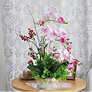 MARJON FlowersArtificial Flowers Furnishing Decoration Potted Plants Butterfly Orchid Set Silk Flower Pink 32
