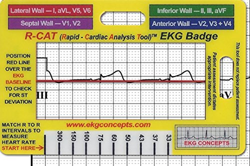R Cat 602573106969 EKG Badge product image