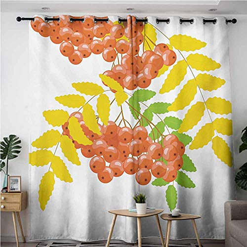 AndyTours Doorway Curtains,Rowan,Fresh and Dried Leafage and Juicy Rowan Fruits Ashberries Rural Nature Theme,Darkening Thermal Insulated Blackout,W108x108L,Coral Yellow Green