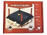 RentACoop Chick Heating Plate - 12'' X 12'' - 20 Watts + Temperature Controller (12''x12'' + Controller)