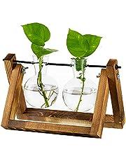 Propagation Station Vaas Glazen Sweet Pea Vaas Voor Bloemen Terrarium Jar Planter Met Houten Rek Standhouders Voor Groene Waterplanten Geschikt Voor Thuis Keuken Tafel Bureau Indoor Decor