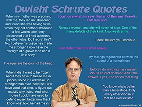 Amazon com: DWIGHT Schrute Quotes  25 The Office Poster (18