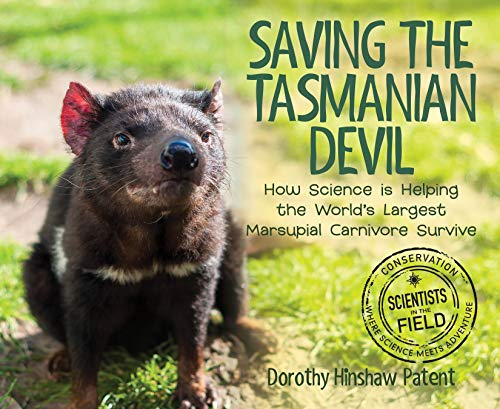 Saving the Tasmanian Devil: How Science Is Helping the World's Largest Marsupial Carnivore Survive (Scientists in the Field Series) (Top 10 Largest Animals In The World)