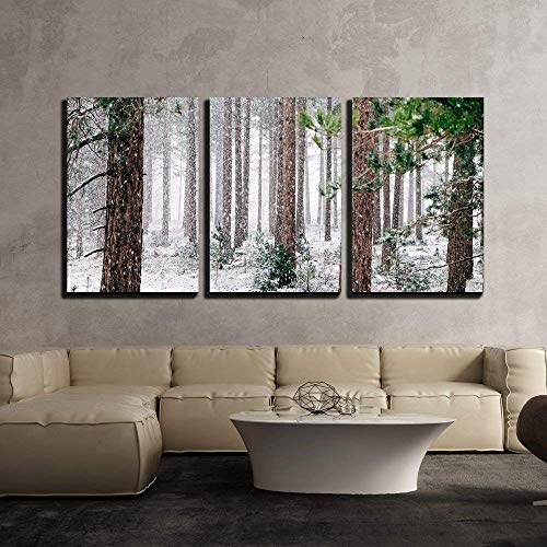(wall26 - 3 Piece Canvas Wall Art - Pine Trees Covered with Snow - Modern Home Decor Stretched and Framed Ready to Hang - 16