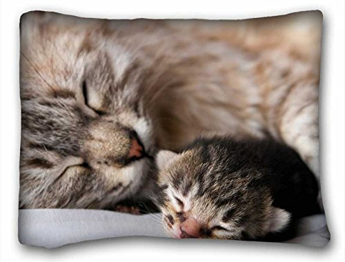 Custom ( Cats Animal Cat Cat ) DIY Pillow Cover Size 20