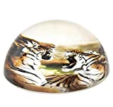 80 MM DOME PAPERWEIGHT TIGER, Case of 72