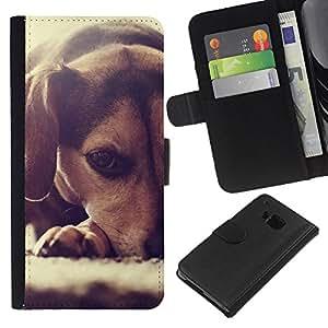 Beagle Puppy Small Dog Foxhound - la tarjeta de Crédito Slots PU Funda de cuero Monedero caso cubierta de piel HTC One M7