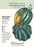 Organic Sweet REBA Acorn Winter Squash Seeds - 1.5 grams - Botanical Interests