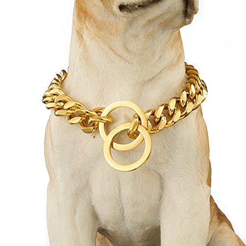 Abaxaca Martingale Big Dog Collar Designer Stianless Steel Durable 15mm Large Necklace Choke Chain Training Collar Cuban Link for Dog Small 12 inch to 24 inch (22 inch, Gold) (Designer Dog Collar Martingale)