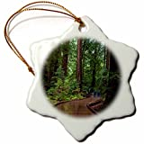 3dRose USA, California. Path Among Redwoods In Muir Woods NM. - Snowflake Ornament, Porcelain, 3-Inch (orn_189475_1)